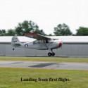 Curt DeBaun III's Aeronca L16A