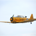 """The World's Best Trainer"" North American AT-6G Texan"