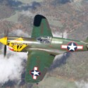 "Texas Flying Legends Museum P-40K Warhawk ""Aleutian Tiger"""
